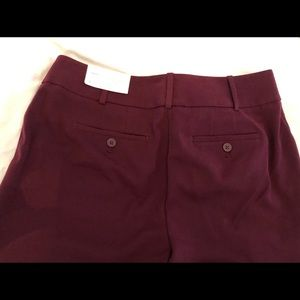 Loft maroon pants